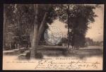 Colombier Les Allees et le Chateau 1900