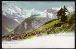 Mürren u. die Alpen 1905 Mürren et les alpes