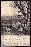Ambras b Innsbruck Schloss Dame Kind Hund 1902