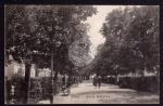Stryi Alleja kotejowa 1915